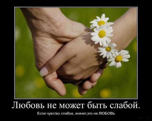 <p>Лучший Демотиваторы о любви</p>  id763528563