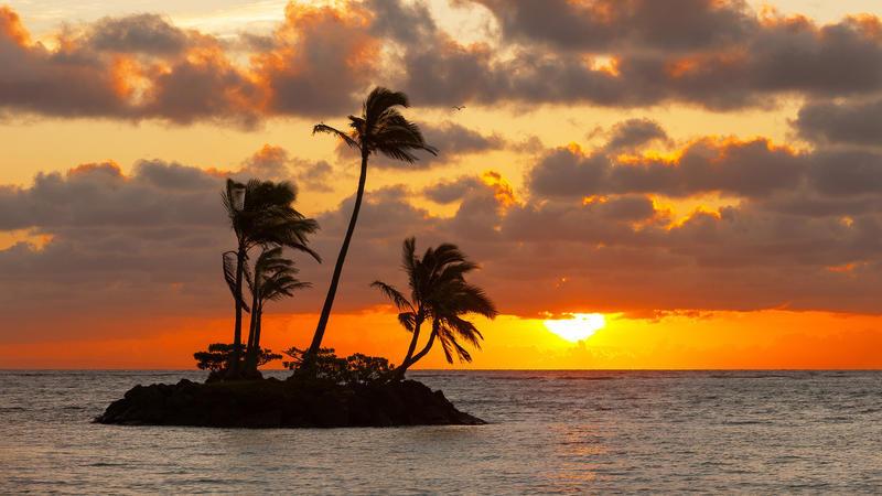 Природа Пальми, Захід сонця, Схід сонця, Море, Острови 620834743