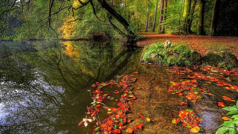 Природа Ліси, Гори, Ріки, Поля, Озера, Дороги 434102636