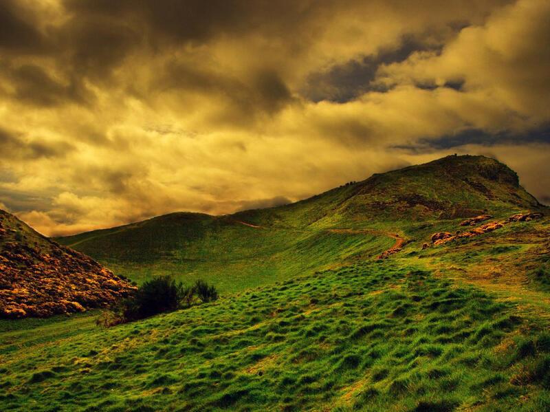 Природа Forest, Mountains, Fields, Autumn, Spring, Summer, Winter, flowers, Sunset, Sunrise id505777074