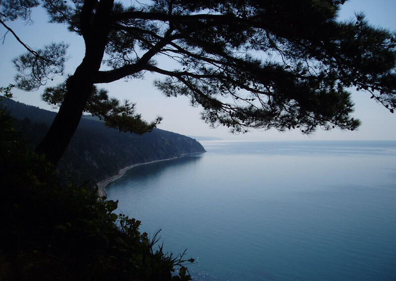 Природа Forest, Mountains, Fields, Autumn, Spring, Summer, Winter, flowers, Sunset, Sunrise id582252266