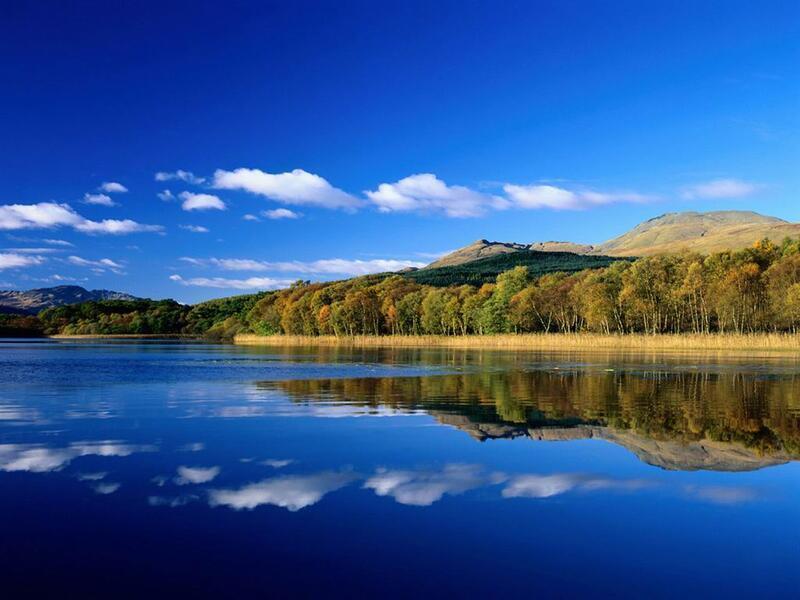 Природа Forest, Mountains, Fields, Autumn, Spring, Summer, Winter, flowers, Sunset, Sunrise id422969951