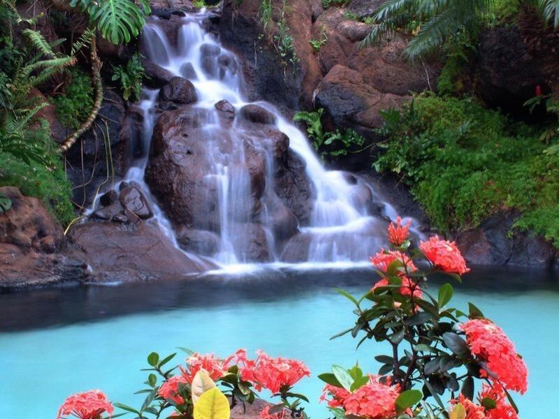 Природа Леса, Горы, Поля, Осень, Весна, Лето, Зима, Цветы, Закат солнца, Восход солнца id2097181464