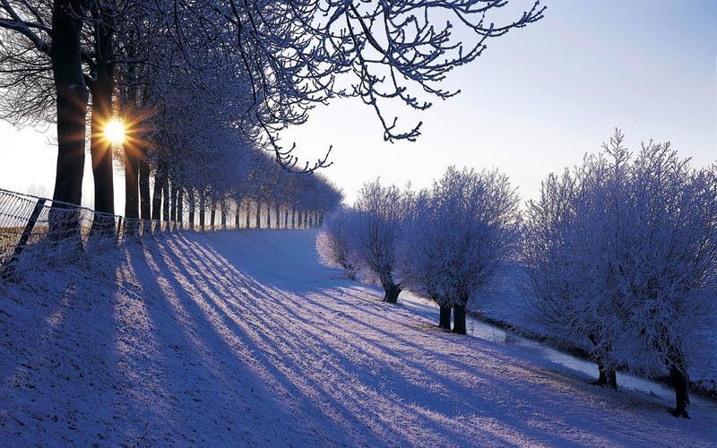 Природа Nature, Forest, Winter, Sunset, Sunrise 1080034336