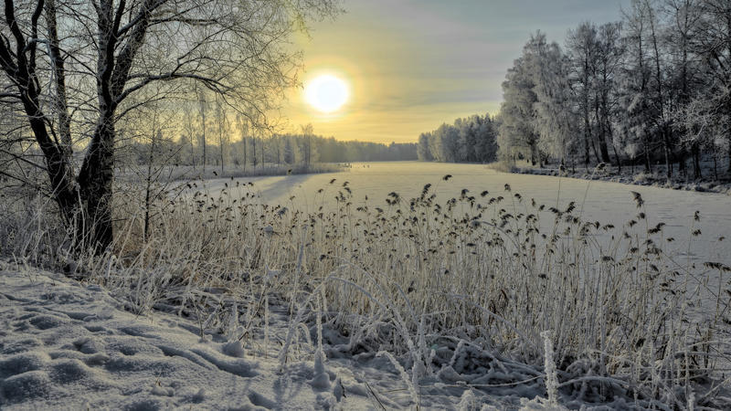 Природа Природа, Ліс, Зима, Захід сонця, Схід сонця 1259565850