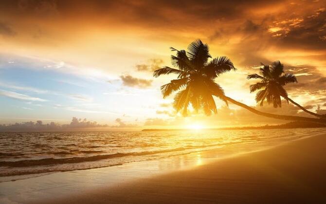 Природа Пальми, Захід сонця, Схід сонця, Море, Острови 1602984619