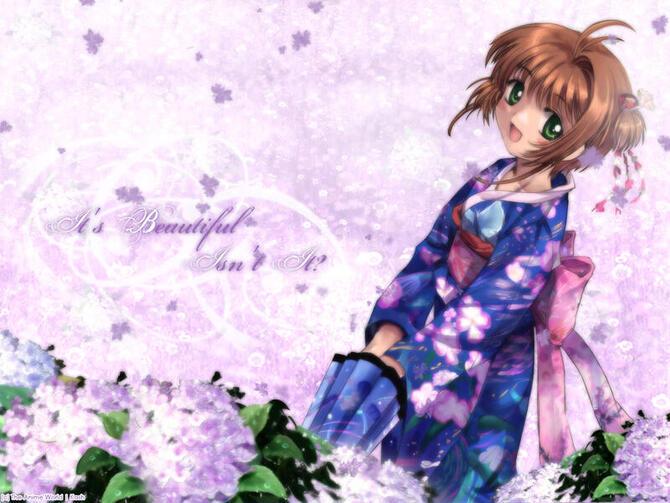 Аніме Cardcaptor Sakura, Сакура — ловец карт, Ловець карт Сакура id648625733