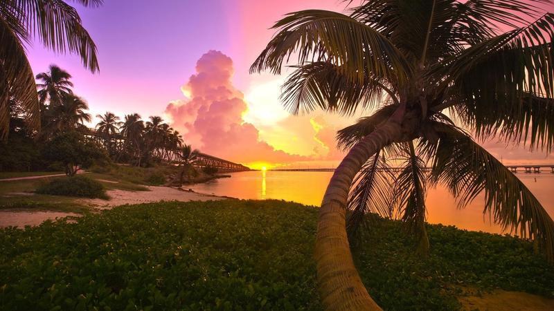 Природа Пальми, Захід сонця, Схід сонця, Море, Острови 165523730