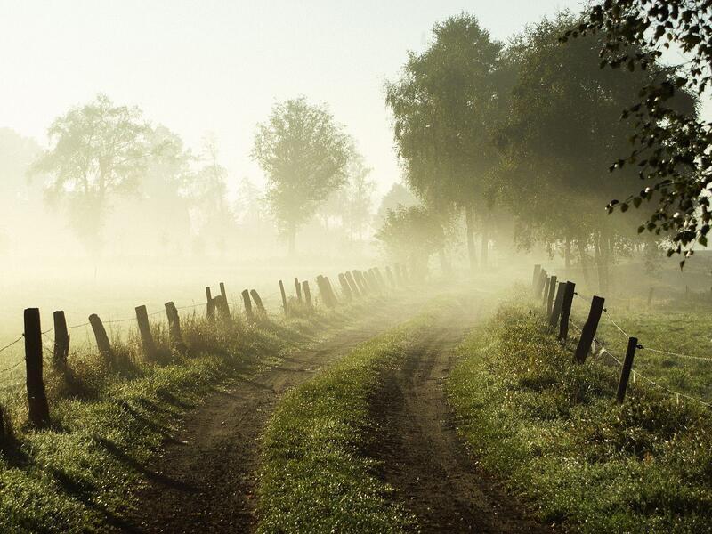Природа Леса, Горы, Поля, Осень, Весна, Лето, Зима, Цветы, Закат солнца, Восход солнца id610562864
