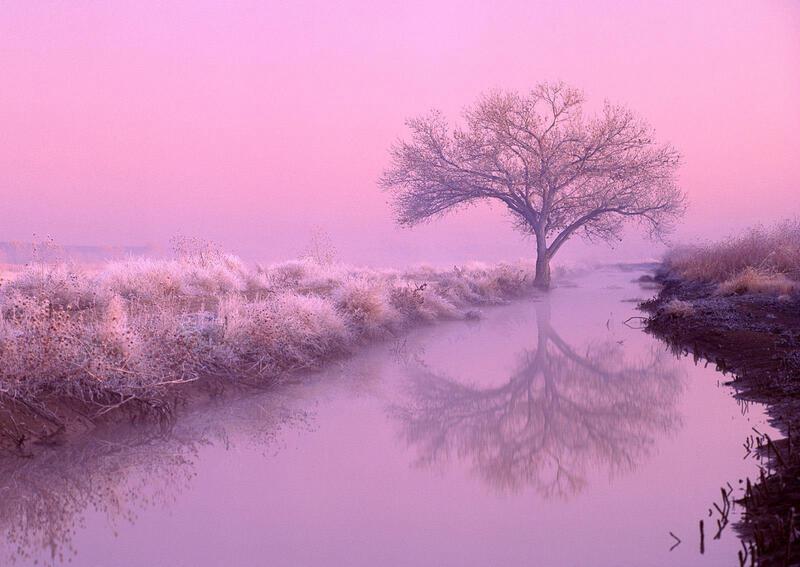 Природа Леса, Горы, Поля, Осень, Весна, Лето, Зима, Цветы, Закат солнца, Восход солнца id23758820