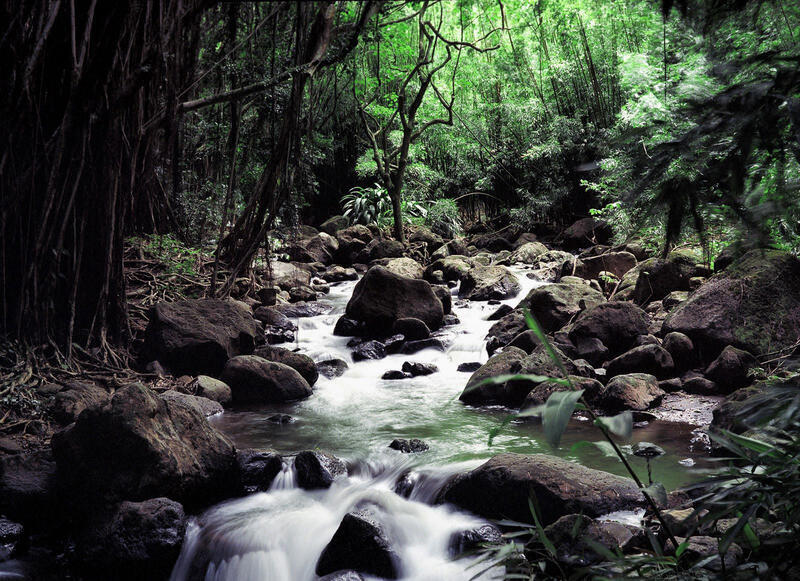 Природа Леса, Горы, Поля, Осень, Весна, Лето, Зима, Цветы, Закат солнца, Восход солнца id1708124205