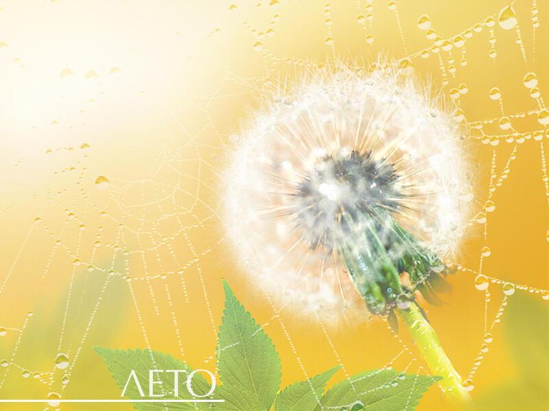 Природа Леса, Горы, Поля, Осень, Весна, Лето, Зима, Цветы, Закат солнца, Восход солнца id250863206