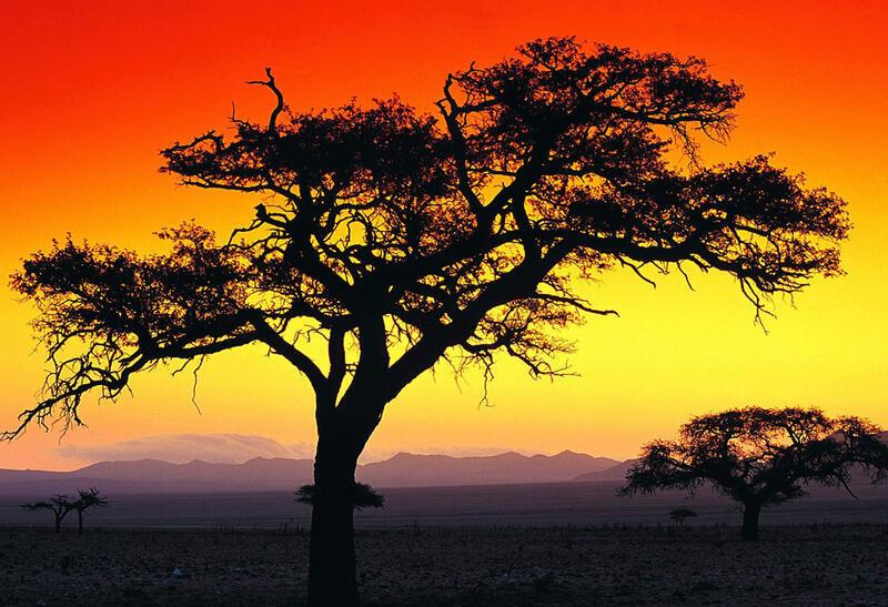 Природа Ліси, Гори, Поля, Осінь, Весна, Літо, Зима, Квіти, Захід сонця, Схід сонця id1869455066