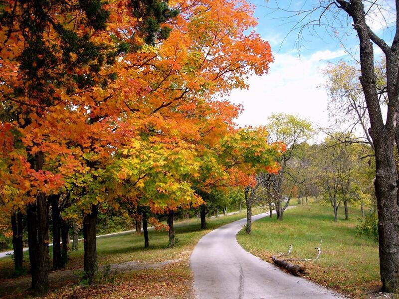 Природа Ліси, Гори, Поля, Осінь, Весна, Літо, Зима, Квіти, Захід сонця, Схід сонця id964103898