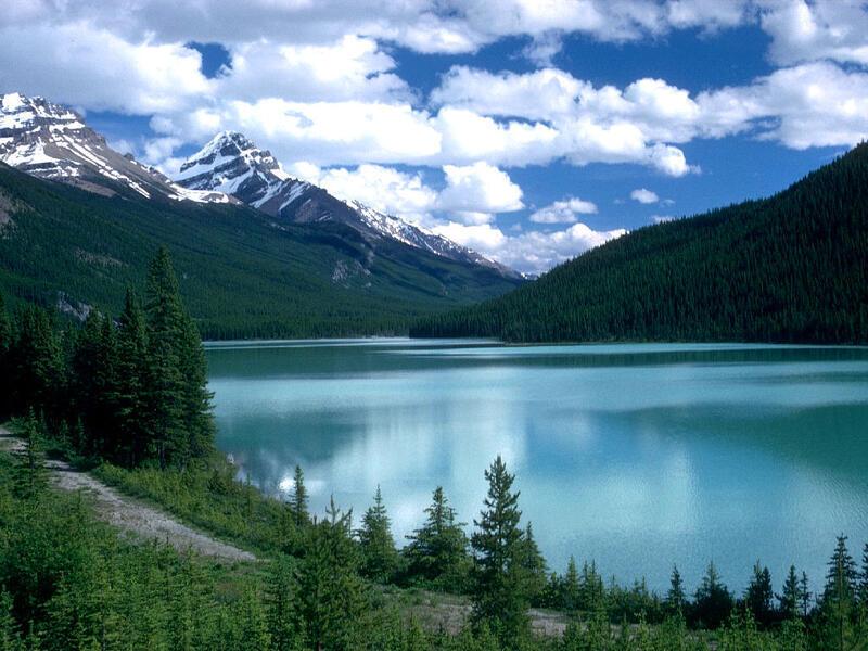 Природа Ліси, Гори, Поля, Осінь, Весна, Літо, Зима, Квіти, Захід сонця, Схід сонця id830660556