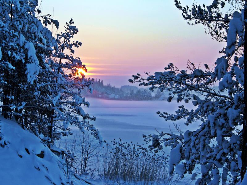 Природа Nature, Forest, Winter, Sunset, Sunrise 1925447074