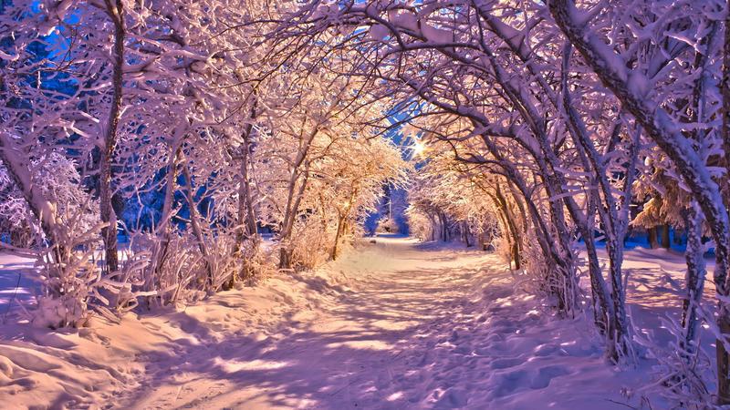 Природа Природа, Ліс, Зима, Захід сонця, Схід сонця 1190522696