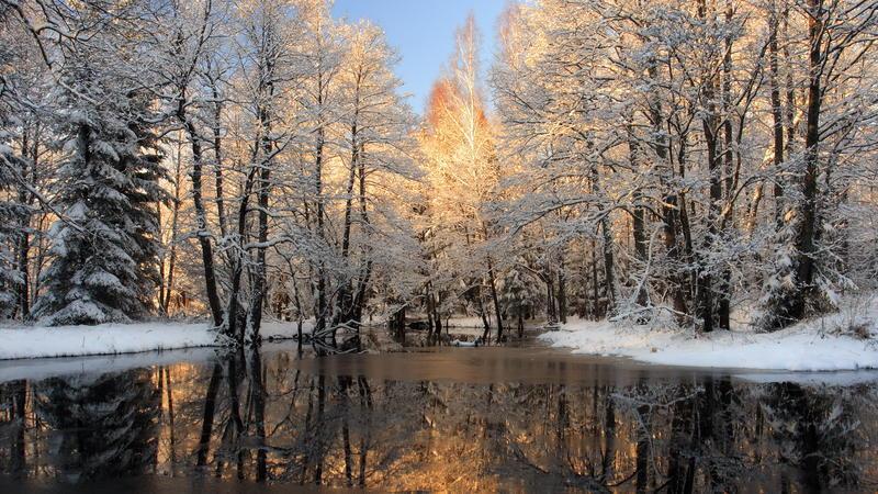 Природа Nature, Forest, Winter, Sunset, Sunrise 1570277975