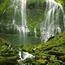 Природа Леса, Горы, Поля, Осень, Весна, Лето, Зима, Цветы, Закат солнца, Восход солнца id1124701548