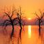 Природа Ліси, Гори, Поля, Осінь, Весна, Літо, Зима, Квіти, Захід сонця, Схід сонця id1995437670