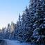 Природа Ліси, Гори, Поля, Осінь, Весна, Літо, Зима, Квіти, Захід сонця, Схід сонця id1062222953