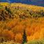 Природа Ліси, Гори, Поля, Осінь, Весна, Літо, Зима, Квіти, Захід сонця, Схід сонця id1411359793