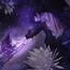 Аніме Волчий дождь, Wolf's Rain, Вовчий дощ, ウルフズ・レイン id1651070831