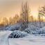 Природа Кращі фотошпалери зими на робочий стіл, Шпалери для робочого столу, Зима, Ліси, Захід сонця, Схід сонця id724946741