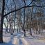 Природа Кращі фотошпалери зими на робочий стіл, Шпалери для робочого столу, Зима, Ліси, Захід сонця, Схід сонця id1062077032