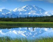 Природа Ліси, Гори, Поля, Осінь, Весна, Літо, Зима, Квіти, Захід сонця, Схід сонця id1004209750