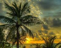 Природа Пальми, Захід сонця, Схід сонця, Море, Острови 1069479393