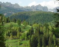 Природа Леса, Горы, Поля, Осень, Весна, Лето, Зима, Цветы, Закат солнца, Восход солнца id1238566698