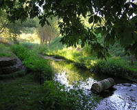 Природа Ліси, Гори, Поля, Осінь, Весна, Літо, Зима, Квіти, Захід сонця, Схід сонця id1955519929