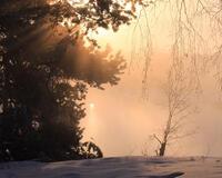 Природа Лучшие фотообои зимы на рабочий стол, Обои для рабочего стола, Зима, Леса, Закат солнца, Восход солнца id1963671203